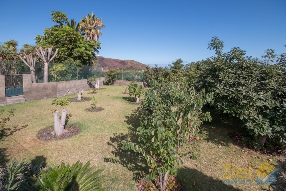 Neben dem Fincabetrieb gibt es auch private Gartenbereiche