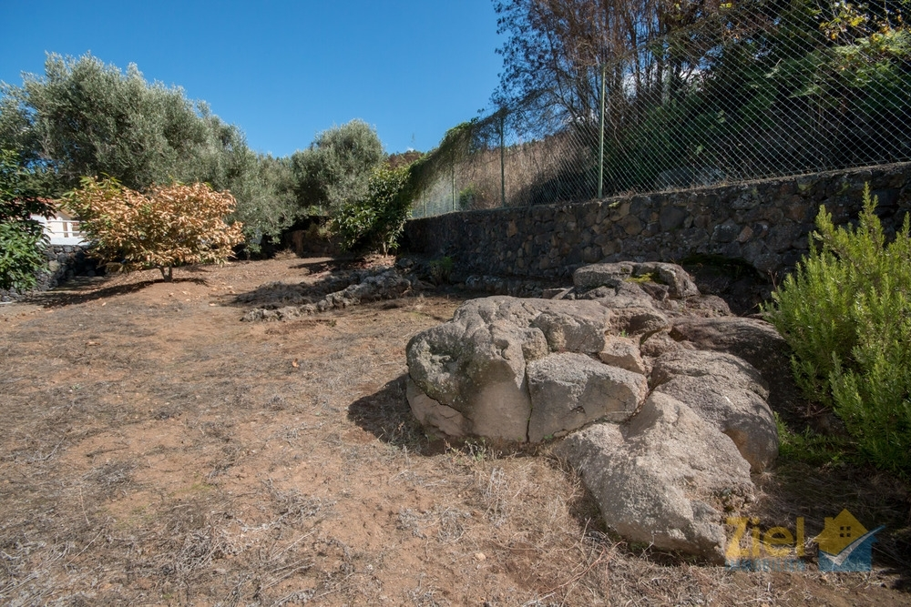 Hübsche Lavaformationen im Garten