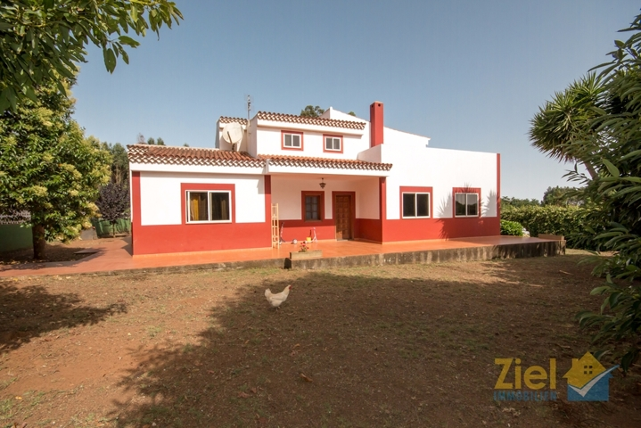 Terrasse hinter dem Haus