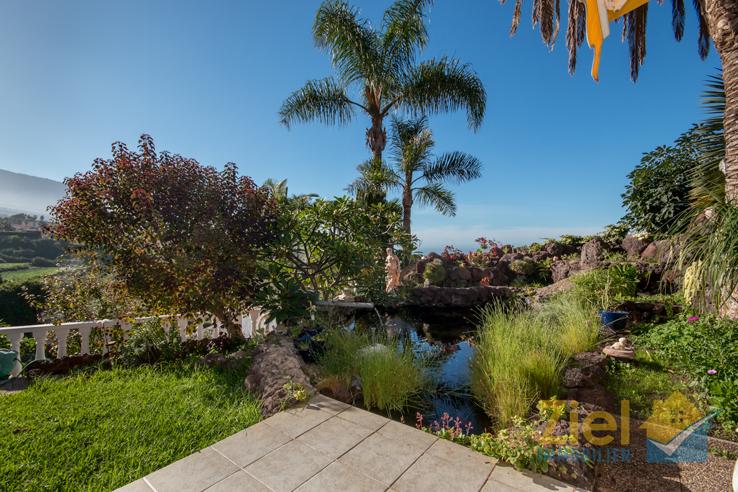 Liebevoll angelegter Teich im Garten
