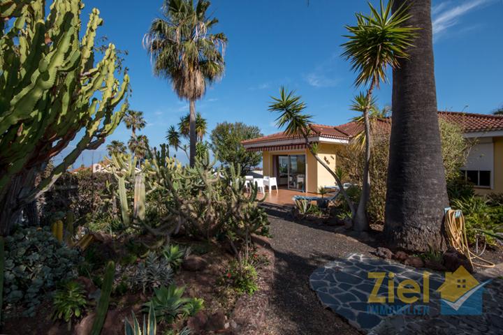 Einheimische Pflanzen säumen das Haus