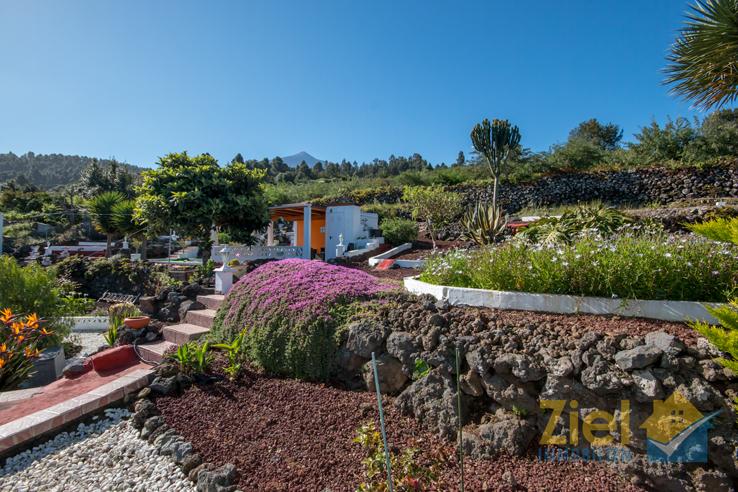 Blick über den tollen Garten auf den Teide