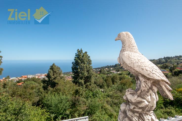 Meerblick aus der Vogelperspektive