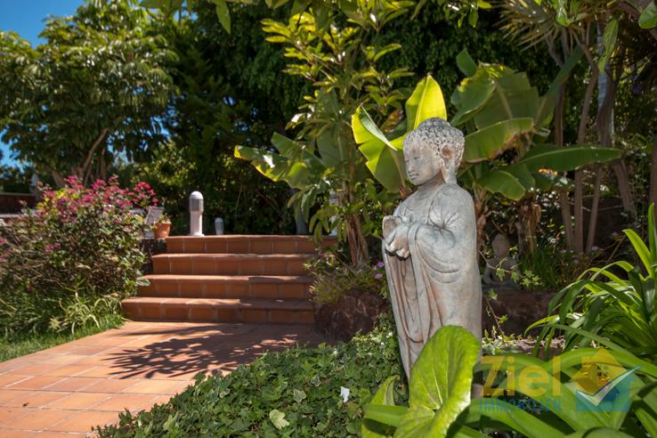 Ein Garten mit vielen Details