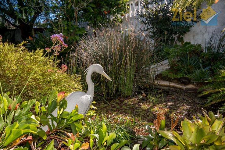 Romantischer Fischteich im unteren Garten