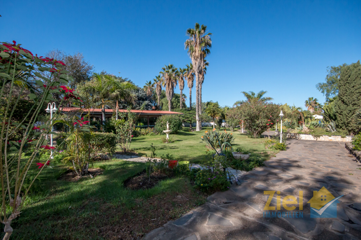Blick in den Garten mit Poolhaus
