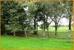 Blick auf 1 ha Weide