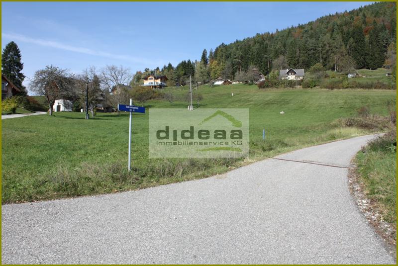 Grünland - Wiese