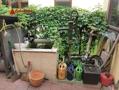 Ein eigener Brunnen für den Garten