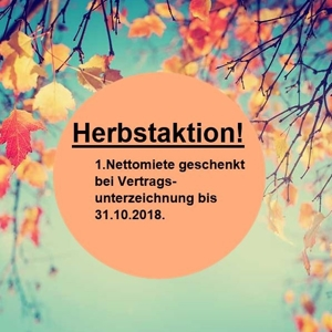 Herbstaktion_6