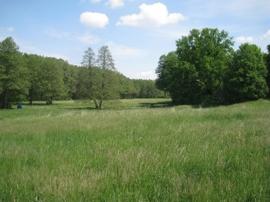 Baugrundstück Hoppegarten