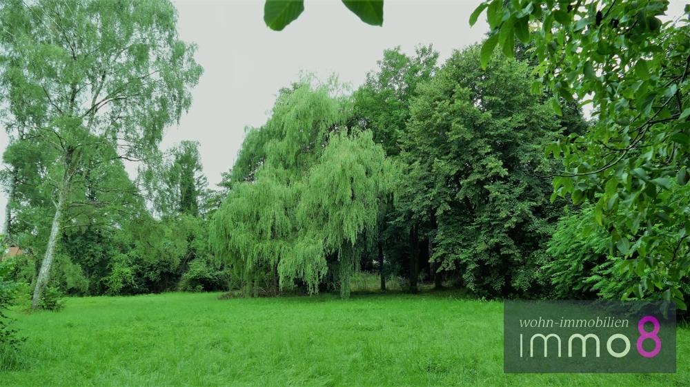 Grüne Oase Platz für Ihr Traumhaus