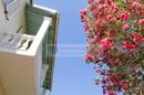 Aussenansicht - Balkon mit Oleander