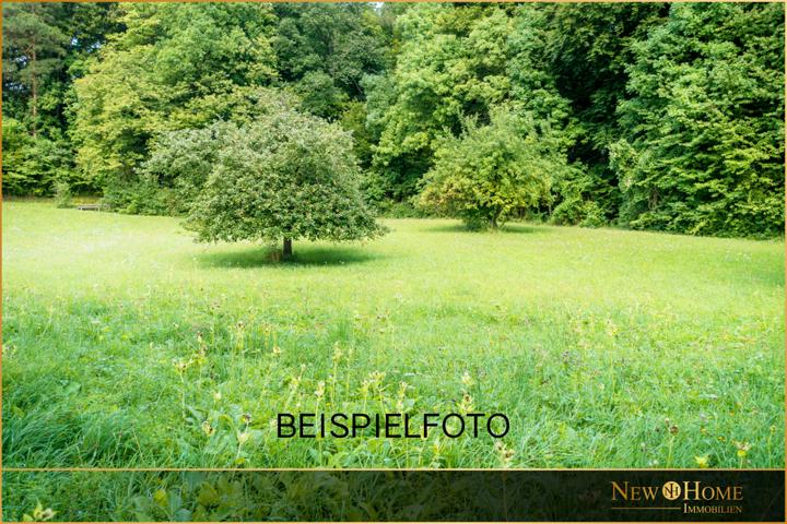 Beispielfoto_Grundstueck