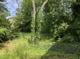 Garten Hof