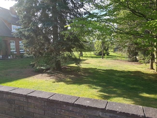 Garten und 2.Hauseingang