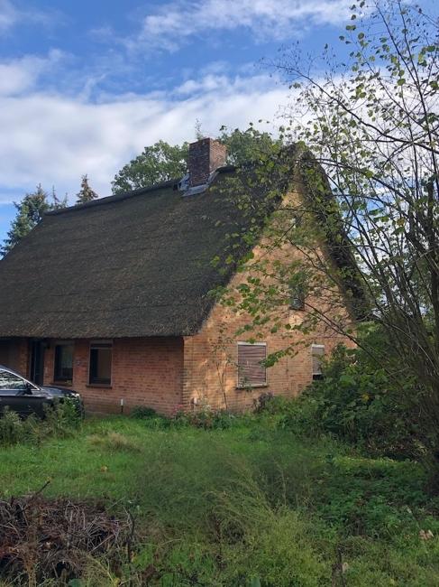 Blick vom Garten auf das Haupthaus