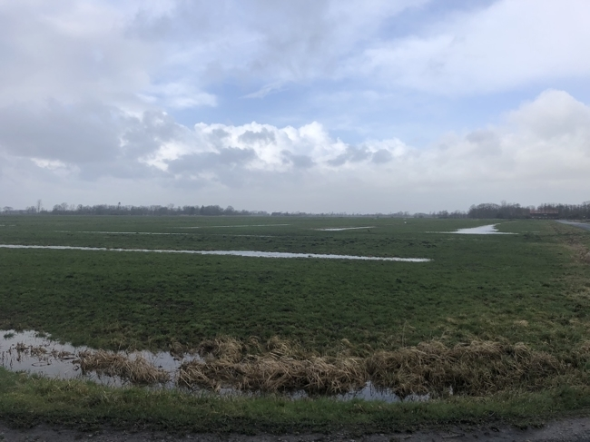 Cuxhavener Land