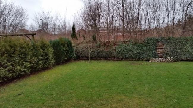 gepflegt eingefasster Garten