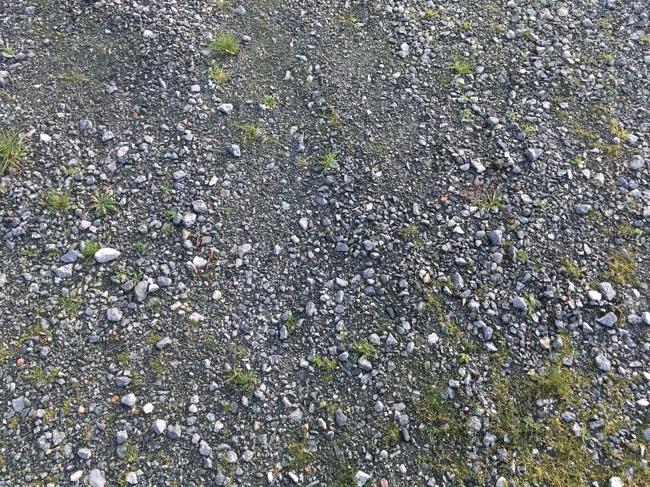 Teile der Fläche geschottert