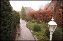 Ansicht: Garten