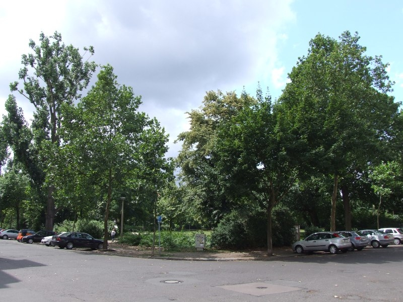 Umgebung Freiligrathplatz