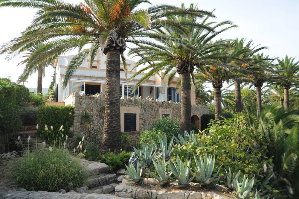 house-from-sea-terrace_0743