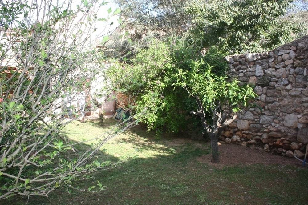 Die alten Nachbarmauern